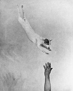 Martin Munkácsi, jumping fox 1930